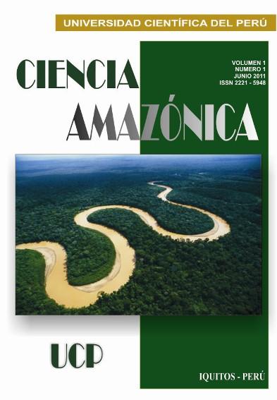 """EL AGUAJAL"""": EL BOSQUE DE LA VIDA EN LA AMAZONÍA PERUANA"""